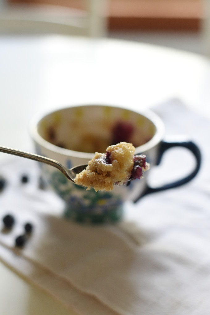 Single-Serve Mug Cake - Blueberry Coffee Cake with fresh blueberries and a brown sugar crumble topping | Feathers in Our Nest
