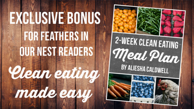 2-Week Clean Eating Meal Plan | Feathers in Our Nest