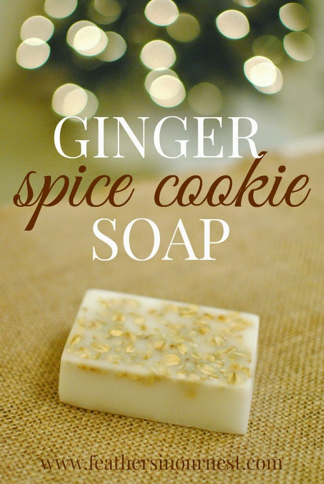 DIY Ginger Spice Cookie Soap | Feathers in Our Nest